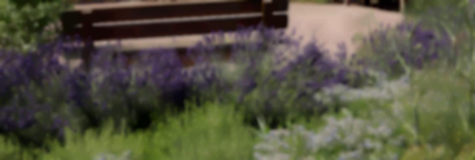 Jardins thématiques de l'abbaye de Thiron-Gardais