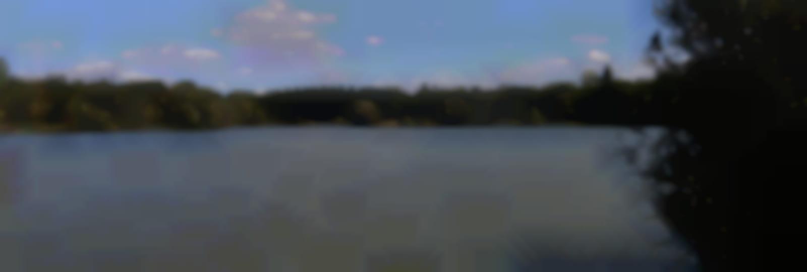 L'étang des vingtaines à Oulins