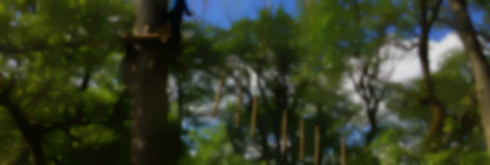 Lutinopark_credit_JLigeron